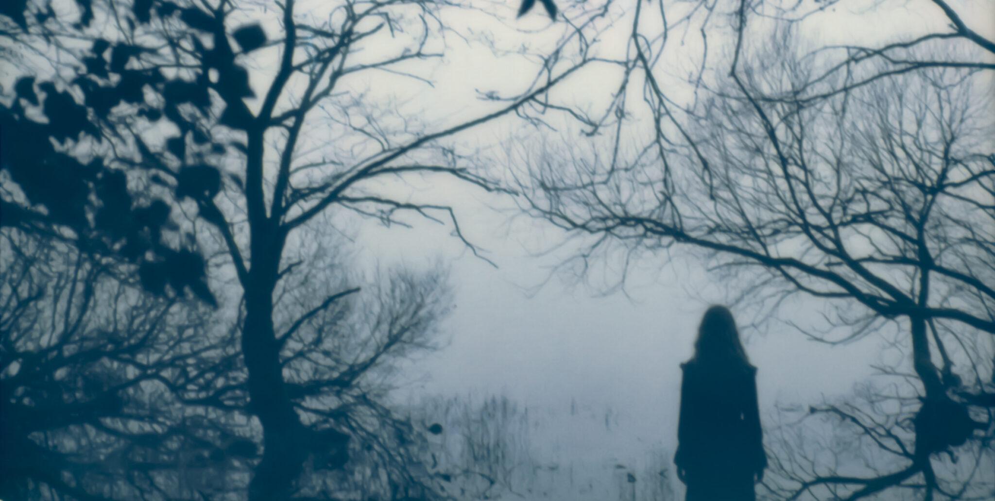 Astrid Kruse Jensen - The Landscape of Memory, 2019